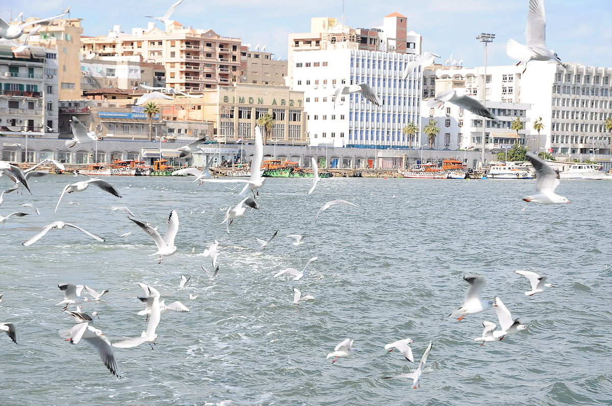 Port_said_egypt_(6)