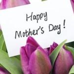 مهرجان عيد الأم  يوم 29 مارس بالنادي